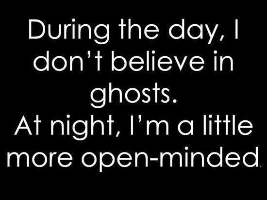 during_the_day_i_dont_believe_in_ghosts_at_night_im_a_little_more_open_minded__2013-07-07
